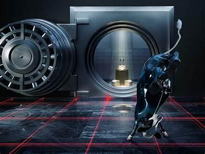 Vault Safe Laser Spy Wtf Cow Wallpapers
