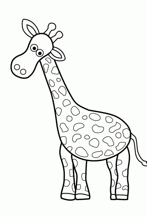 introduce kids wild animals  animals coloring