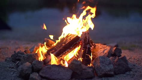 Close up of Campfire Burning Stock Footage Video (100% ...