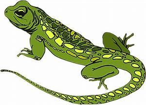 Free Animated Animals - Bird Gifs - Lizard Clipart