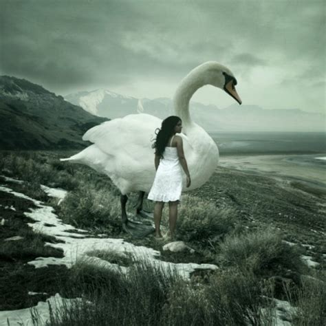 anja stiegler dream photography