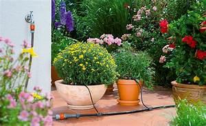 blumenkastenbewasserung selbstde With französischer balkon mit garten bewässerungssystem gardena