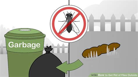 how to get rid of flies outside on patio how to get rid of flies outside 15 steps with pictures