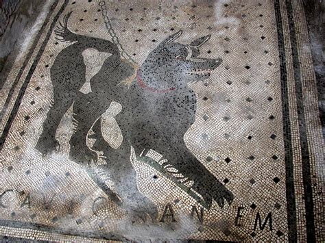 Cave Canem Doormat by Greetings From Matt And Vesuvius And Pompeii