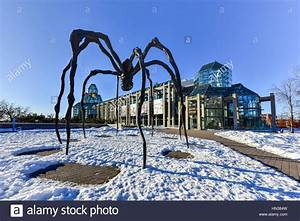 Spider sculpture in front the National Gallery of Canada ...