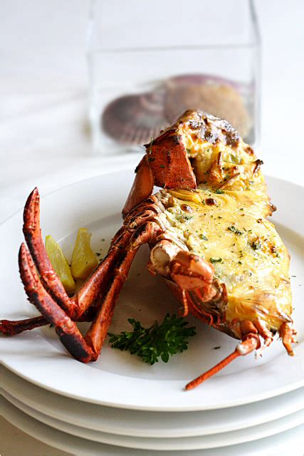 baked lobster  cheese  barra