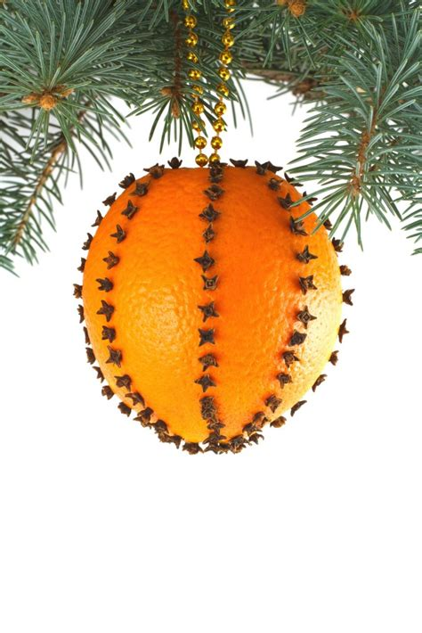 citrus smelling christmas tree 30 beautiful citrus decoration ideas celebration all about