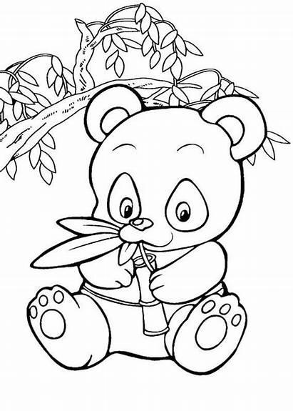 Panda Coloring Pages Bear Animal