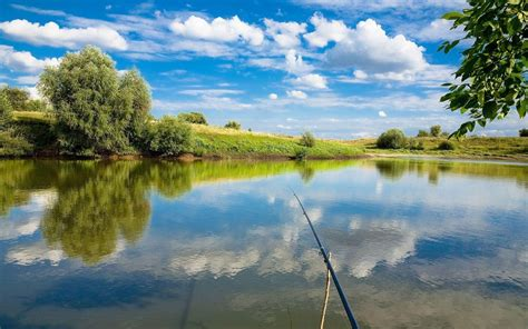 , fishing tag wallpapers page fish sport fishes water fishing image 933×700. Fishing Wallpapers - Wallpaper Cave