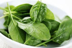 Japanischer Spinat Pflanze : japanischer spinatsalat chef ~ Frokenaadalensverden.com Haus und Dekorationen