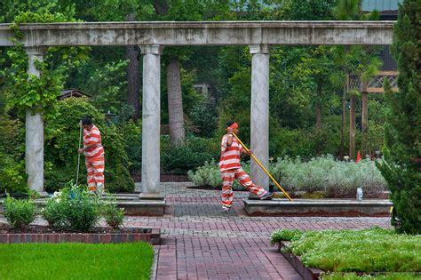 mercer arboretum and botanic gardens photo 1458 18 prisoner taking care of flowers at morning