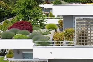 Pflanzen Für Dachterrasse : dachterrasse richtig bepflanzen egli garten ~ Michelbontemps.com Haus und Dekorationen