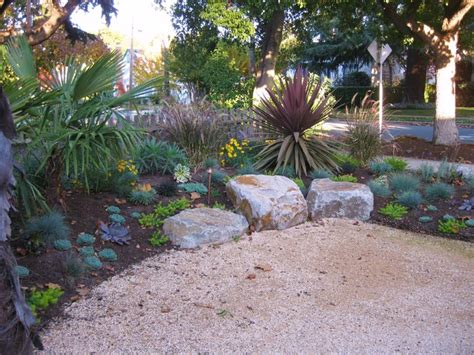drought tolerant low maintenance and year