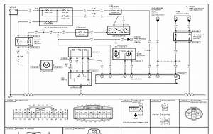 Dayton Unit Heater Wiring Diagram