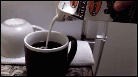 Return Of The Animated Gif Day! Wegmans Coffee Caffeine Content Biohazard Gloria Jeans Marylou's K Cups On Sale Bustelo Stout Vs Yerba Mate