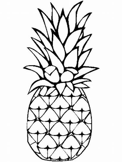 Pineapple Coloring Pages Fruits Cartoon Drawing Clip