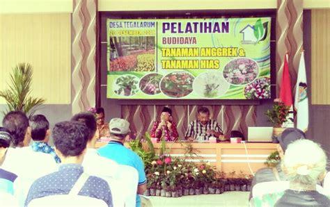 gelar pelatihan tanaman hias anggrek desa tegalarum