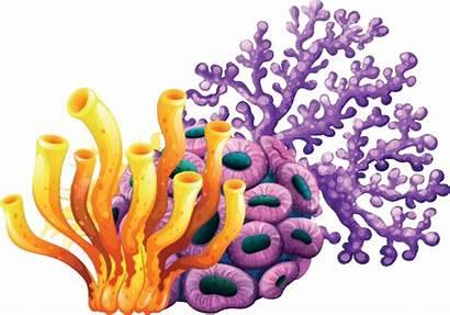 Coral Reef Clip Purple Sea Yellow Sponge