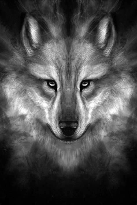 Angry Lone Wolf Wallpaper by Freeios7 Wolf Story Center Freeios7
