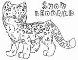 Leopard Snow Coloring Pages Animal Print sketch template