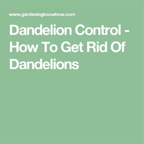 how to get rid of dandelions 82 best beautiful design images on pinterest dream homes
