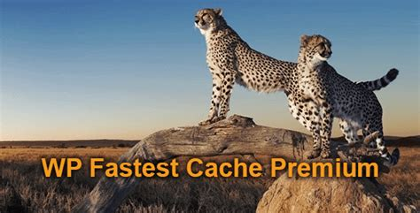 Wp Fastest Cache Premium 1.5.2 Nulled