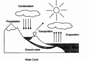 Natural Resources Class 9 Notes Science Chapter 14