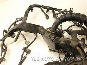 2006 Toyota Avalon Engine Wire Harness