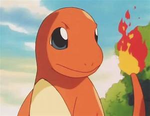 gif pokemon pokemon gif television stuff charmander ...