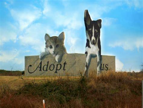 charleston animal society home facebook