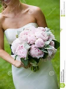 Bouquet De Mariage : bouquet de mariage des fleurs roses photo stock image du fleurs vert 24043812 ~ Preciouscoupons.com Idées de Décoration