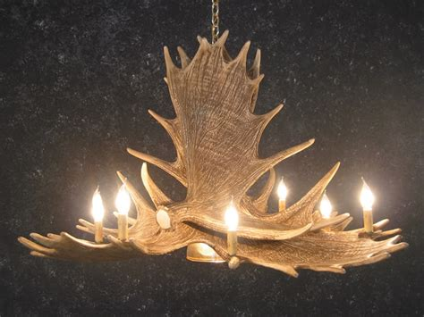 moose six antler chandelier sale