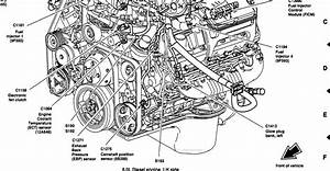 Diagrams Wiring   6 0 Powerstroke Wiring Diagram