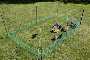 Rouleau De Grillage Pas Cher : filet enclos pour poules 21 metres animaloo ~ Edinachiropracticcenter.com Idées de Décoration