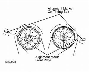 1996 Honda Passport Serpentine Belt Routing And Timing Belt Diagrams