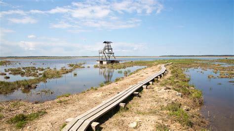 Latvia, Engures ezers Nature Park - YouTube