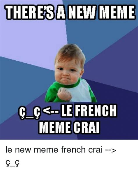 What Is Meme In French - theresa new meme le french meme crai le new meme french crai gt 231 231 meme on sizzle