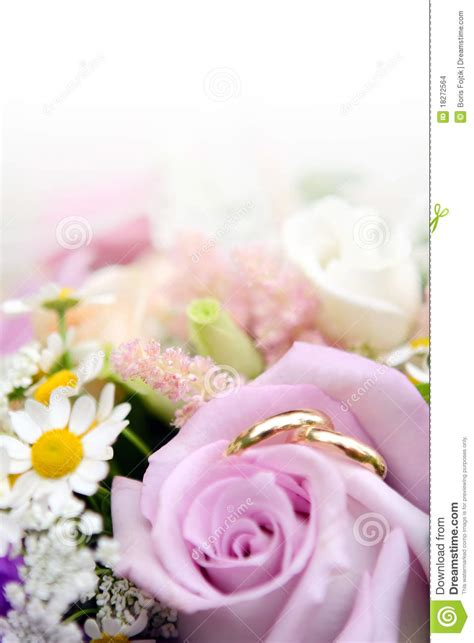 wedding rings  flowers stock photo image  loving