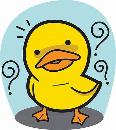 Question Cartoon Duck Vector Meat Clip Vectors