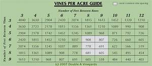 Double A Vineyards Wine Spacing Chart