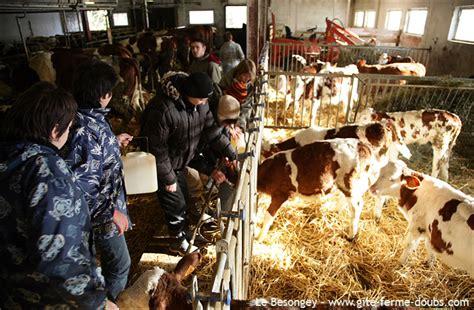 chambres d hotes haut doubs ferme découverte goûter à la ferme