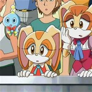 Sonic X Cream The Rabbit And Vanilla Pictures, Images ...