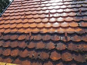 Moos Entfernen Dach : moos vom dach entfernen essig cheap kupfer verhindert moos auf dem dach with moos vom dach ~ Orissabook.com Haus und Dekorationen