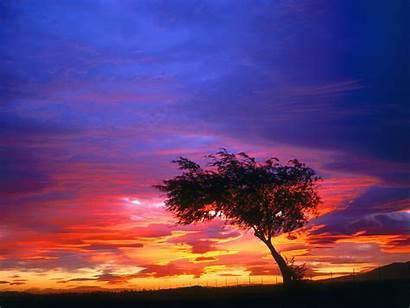 Sunrise Nature California Palmdale 3d Sky Shot