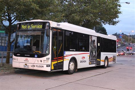 Melbourne - Brighton Bus Lines news