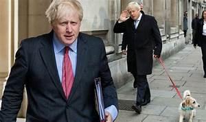 Boris Johnson Weight Loss  Has Boris Johnson Lost Weight