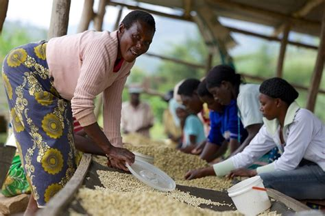 Gravitas ® blend vintage 2020. Women Bring Hope to Rwanda Through Coffee - Starbucks Canada
