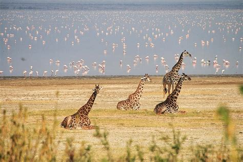 beautiful places  visit  tanzania