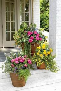 25 beautiful container garden ideas