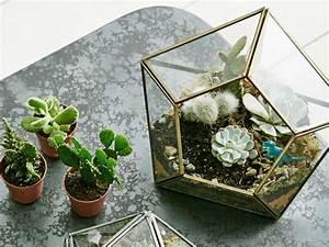 Terrarium Plante Deco : 10 id es d co pour vos plantes joli place ~ Dode.kayakingforconservation.com Idées de Décoration